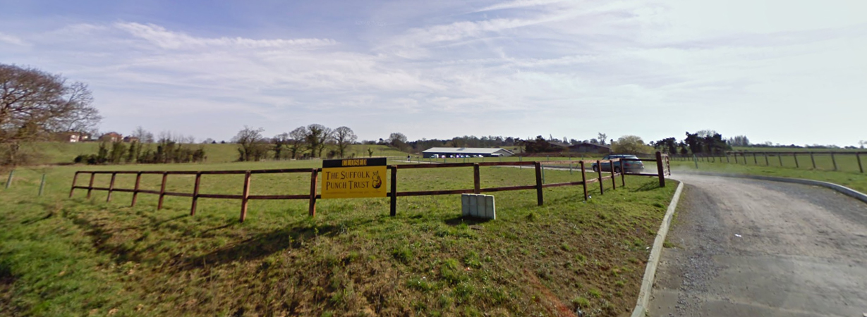 Suffolk Punch Heavy Horse Museum
