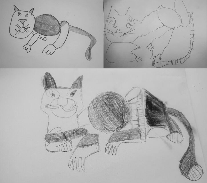 A selection of drawings of 'Cat' by pupils at the three Harlow primary schools