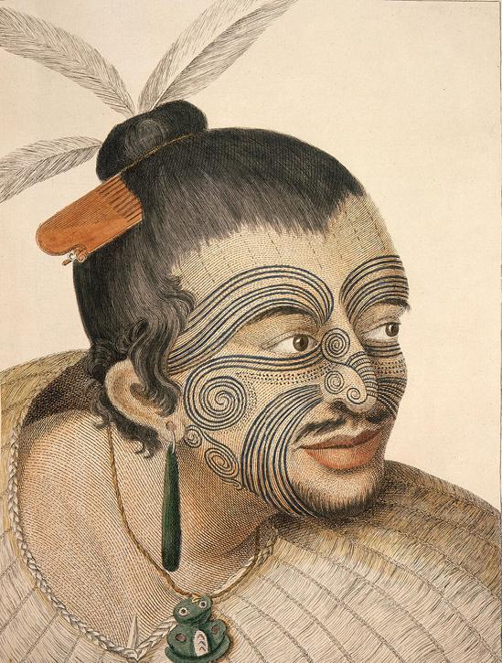 Sketch of a Māori man (after Sydney Parkinson)