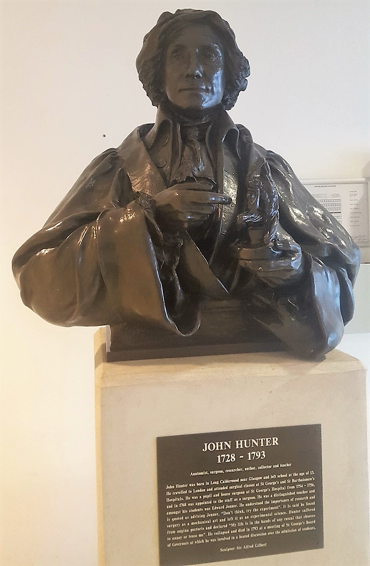 Bust of John Hunter (1728–1793)