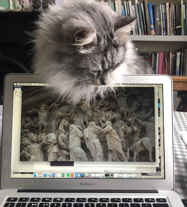 Mars enjoying a HENI Talk on the Pisa Pulpit