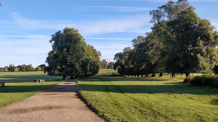 Commute to work through Wollaton Park