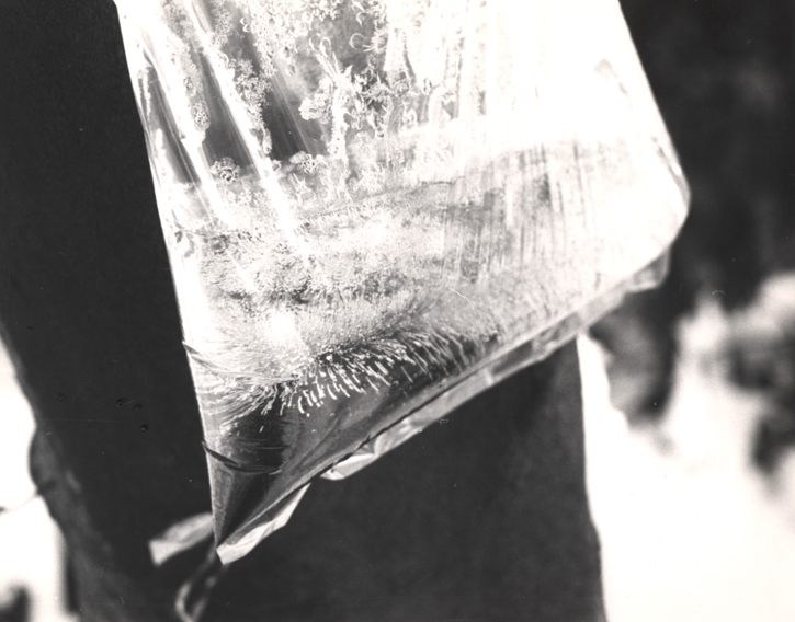 Tea-Bag Piece