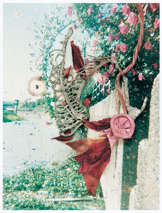 From 'Hackney Flowers'