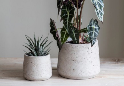 Tapered cement planters