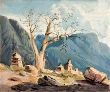 Old Poplar Tree (Populus Euphrasica) with Stone Monuments in Ladák, Kashmir