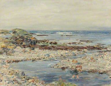 A Shingly Shore