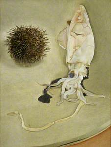 Still Life with Squid and Sea Urchin