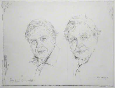 Studies – David Attenborough