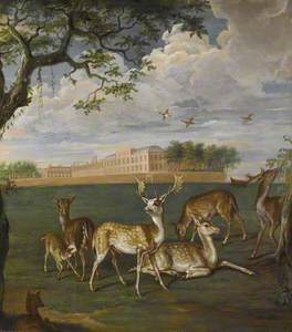Fallow Deer in Hyde Park, with Kensington Palace