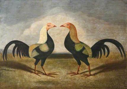 Pair of Fighting Cocks