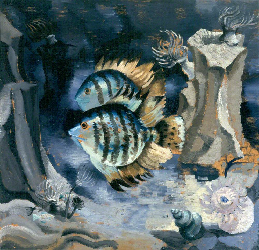 Angelfish, London Aquarium