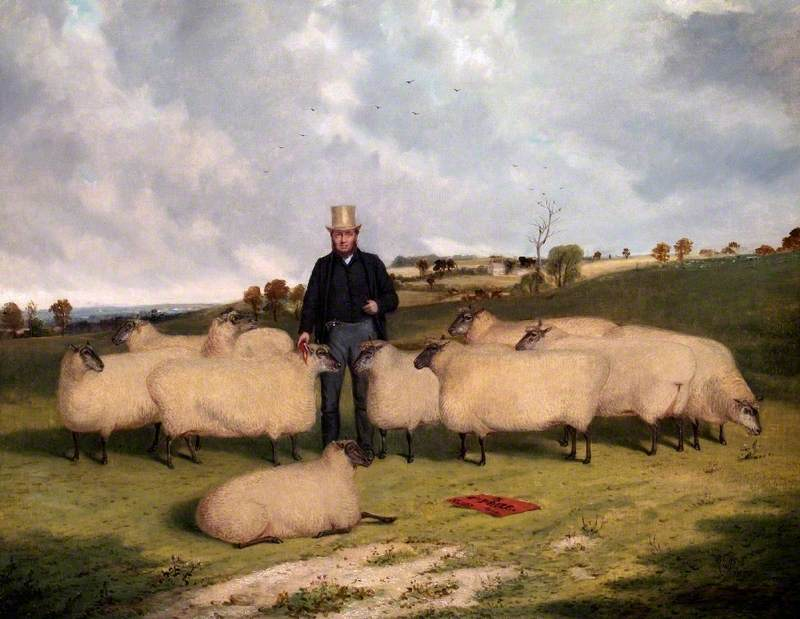 John Treadwell and His Flock of Oxford Down Sheep