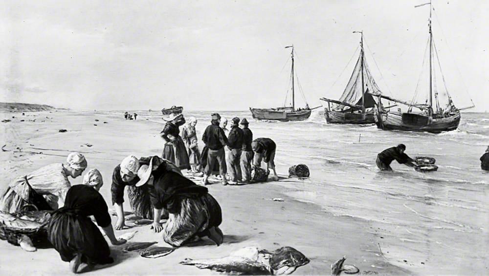 Fish from the Dogger Bank, Scheveningen, Holland