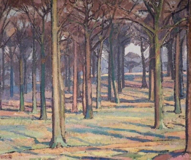 Wood in Richmond Park