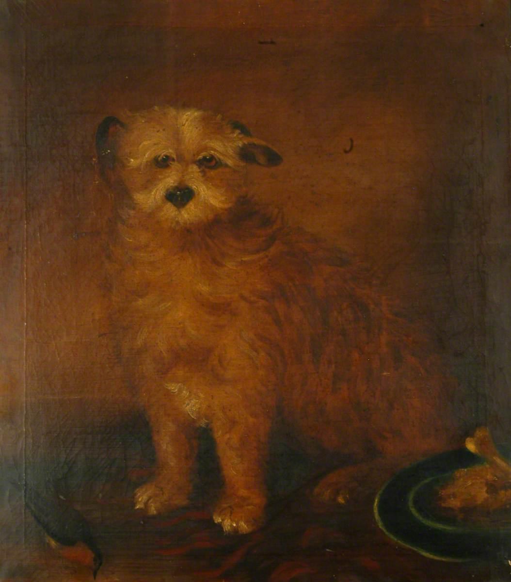 Wordsworth's Dog, Pepper
