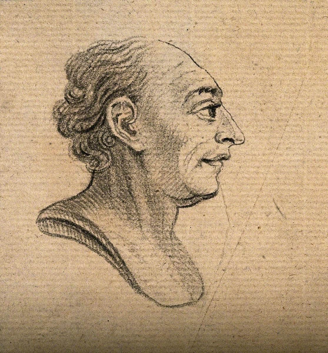 A Bust Showing a Phlegmatic-Sanguine Temperament