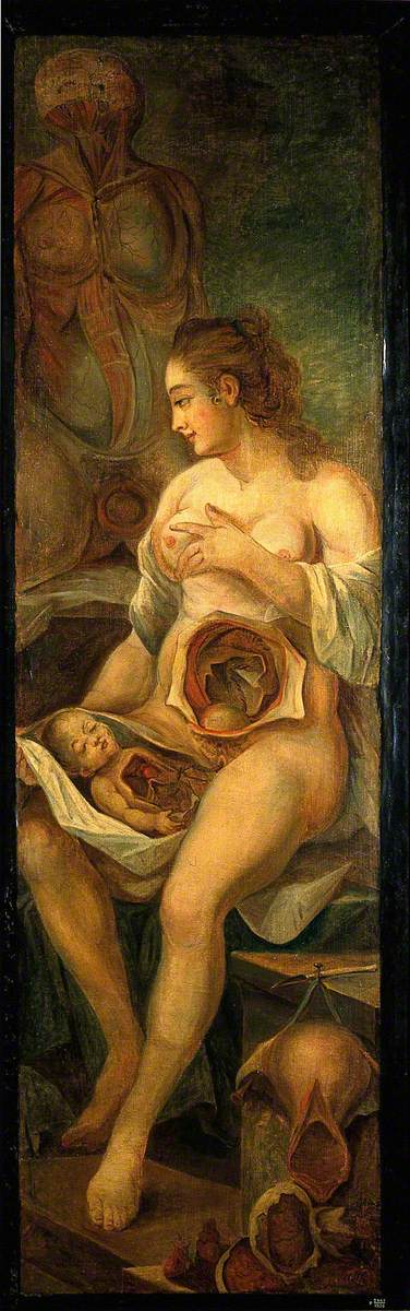 A Seated Woman, Dissected, Holding a Dissected Baby, Accompanied by Separate Sections of the Body