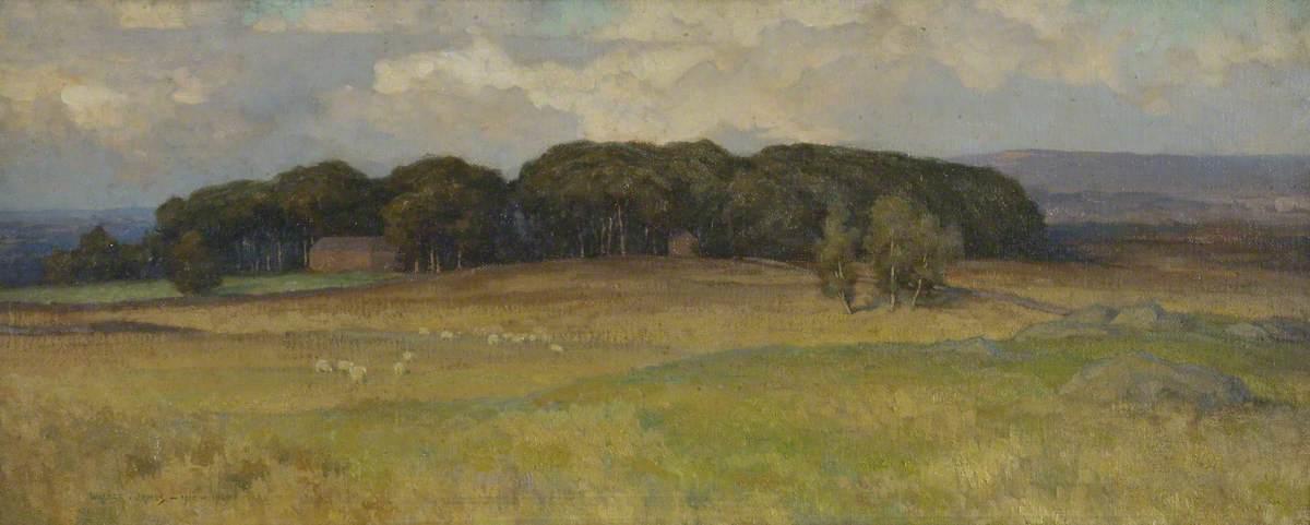'Troughend' near Otterburn
