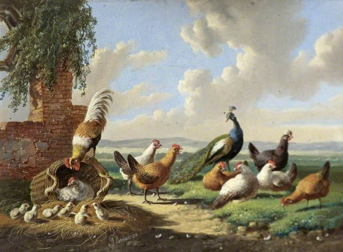 Fowl in a Landscape