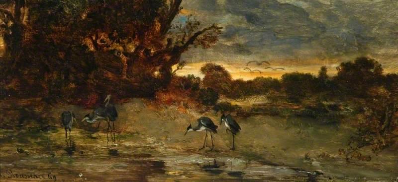 The Heron's Pool