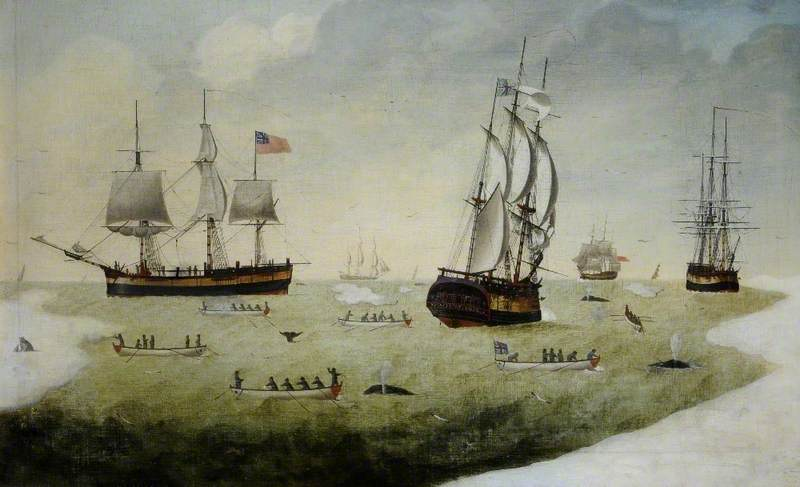 'Munificence' and Other Whalers in the Arctic
