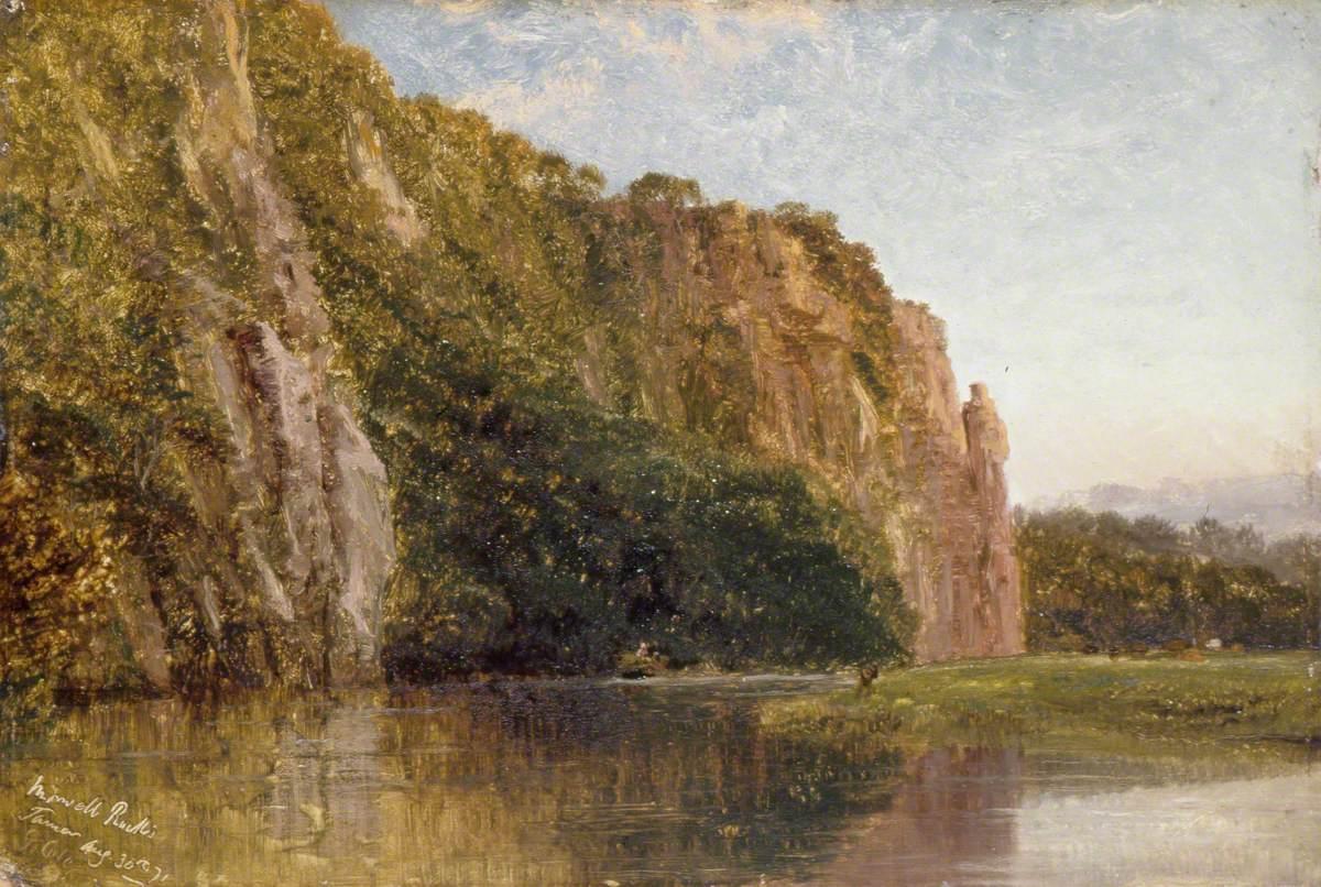 Morwell Rocks, on the Tamar, Devon