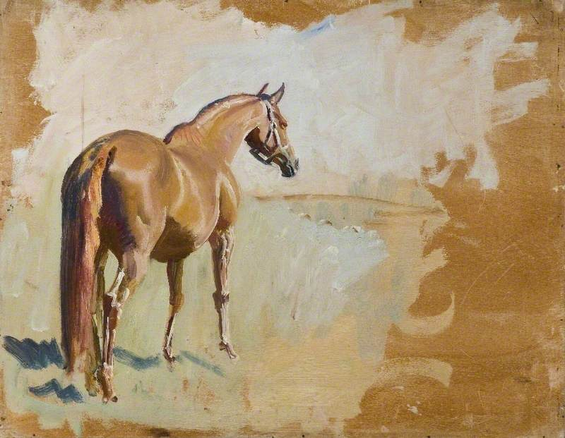 Study of a Racehorse