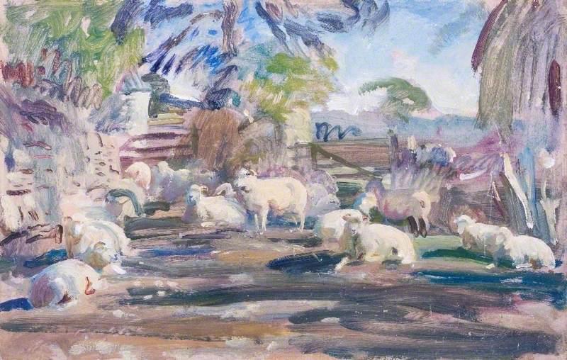 Study of Exmoor Sheep