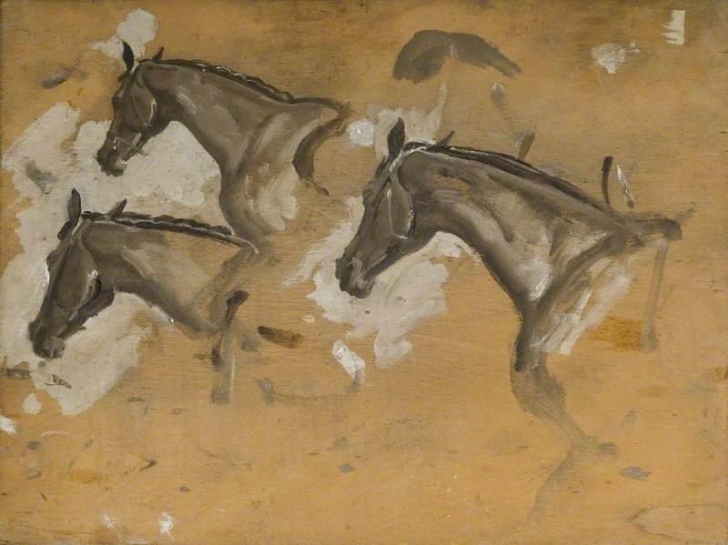 Studies of a Horse's Head