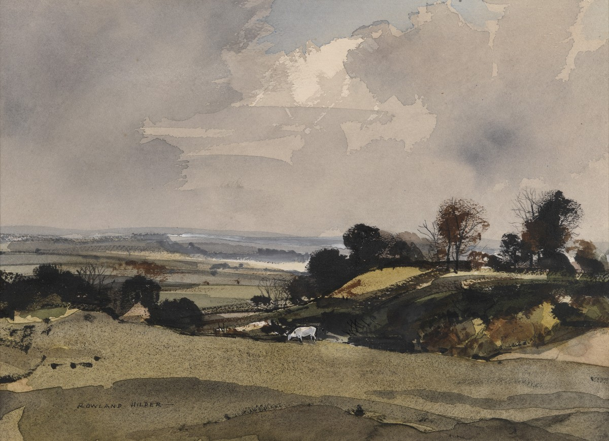 Hampshire Scene with a White Cow