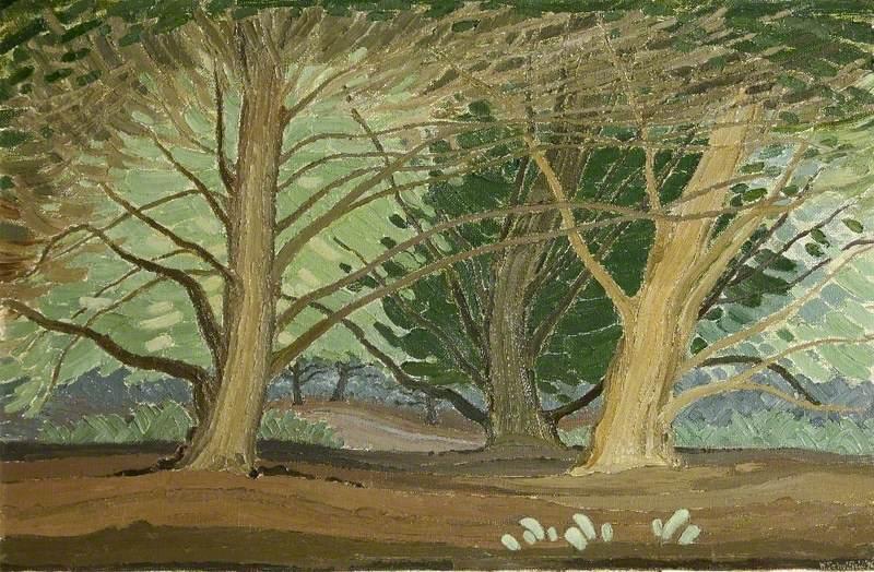 Great Yews near Salisbury, Wiltshire