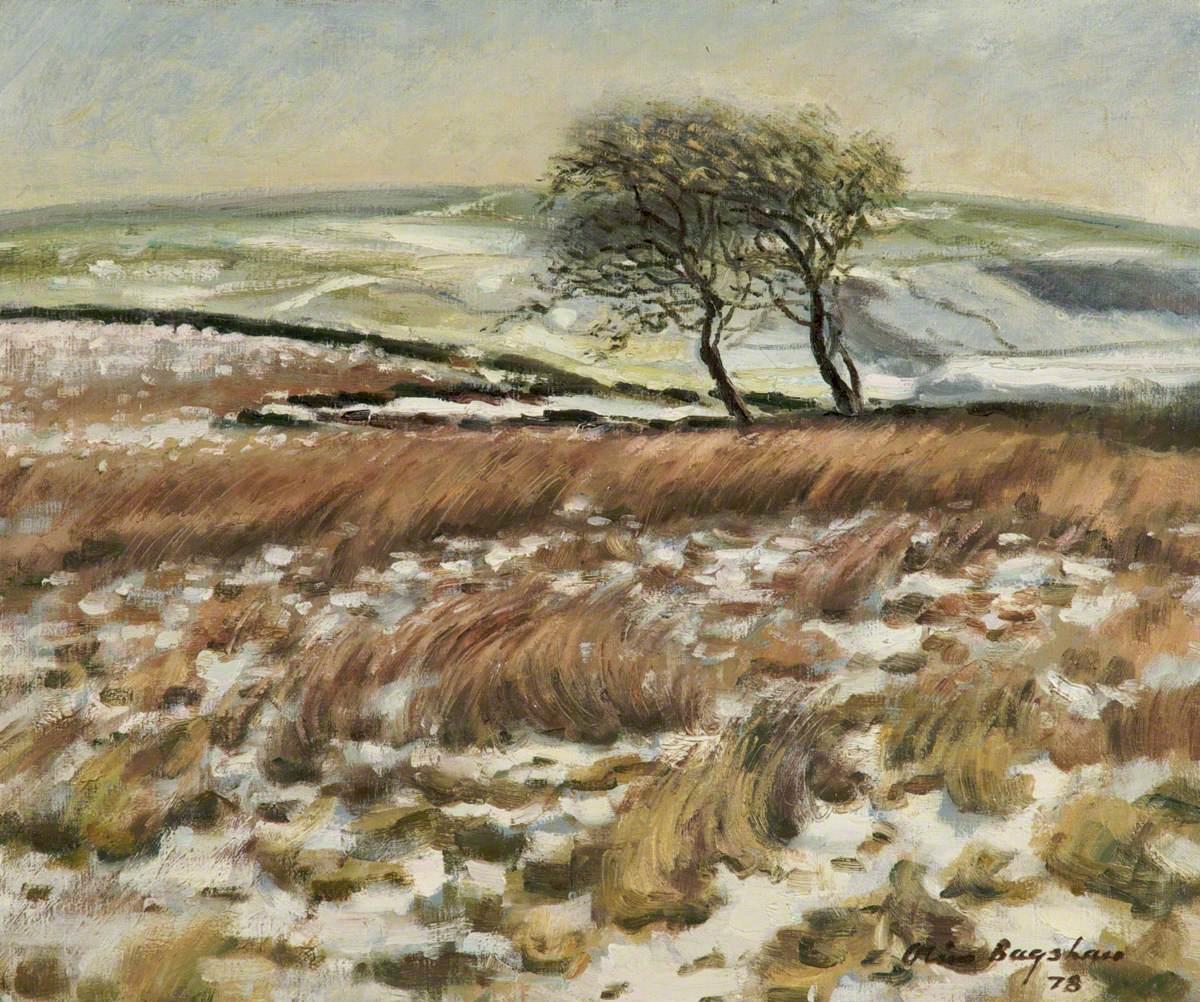 Adams Hill, Winter