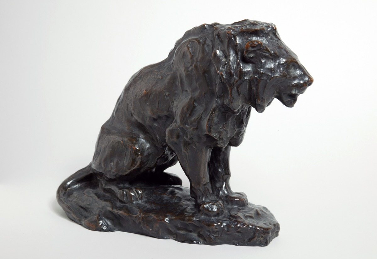 Lion Seated