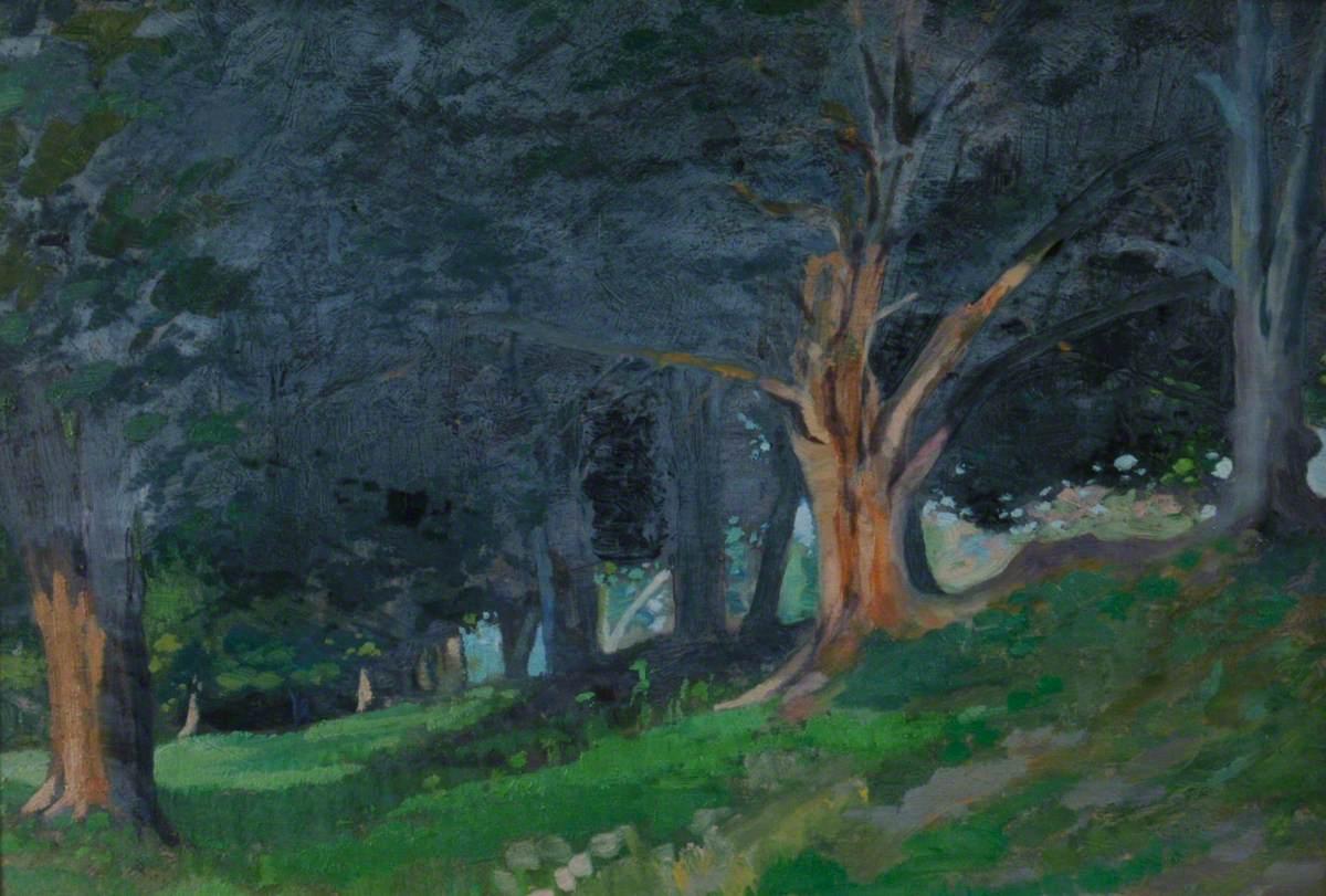 Trees in Avington Park