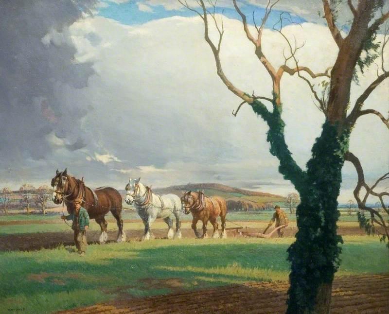 Ploughing on Sandy Heath