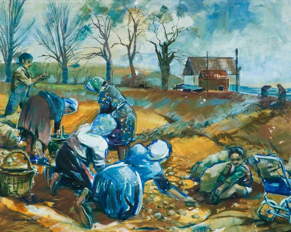 Potato Pickers near Melton, Leicestershire