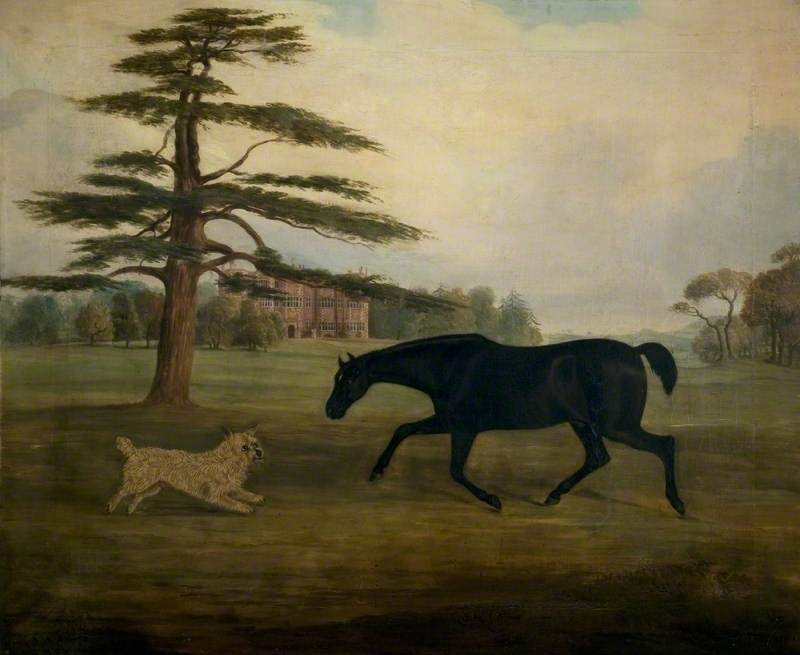 A Hunter and Dog in the Grounds of Quenby Hall, Leicestershire
