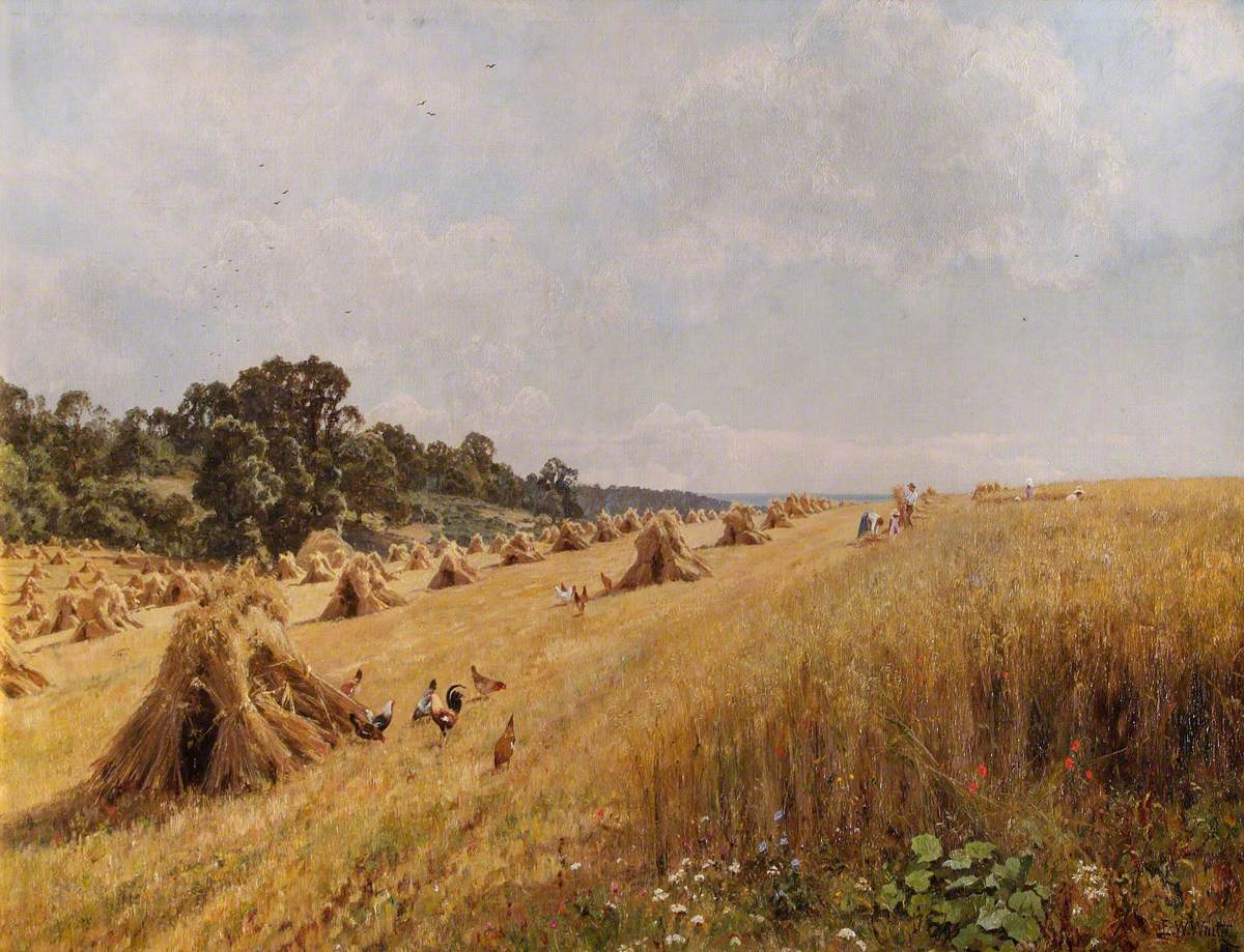 Harvest in the Home Field