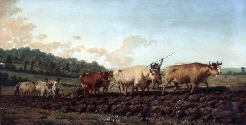 Ploughing in the Nivernais, France