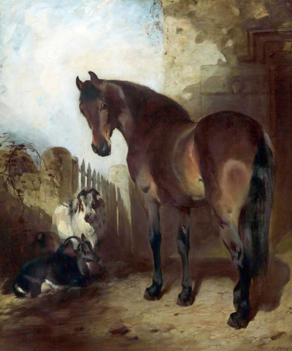 Horse and Goats