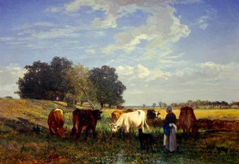 Cattle Grazing in Touraine