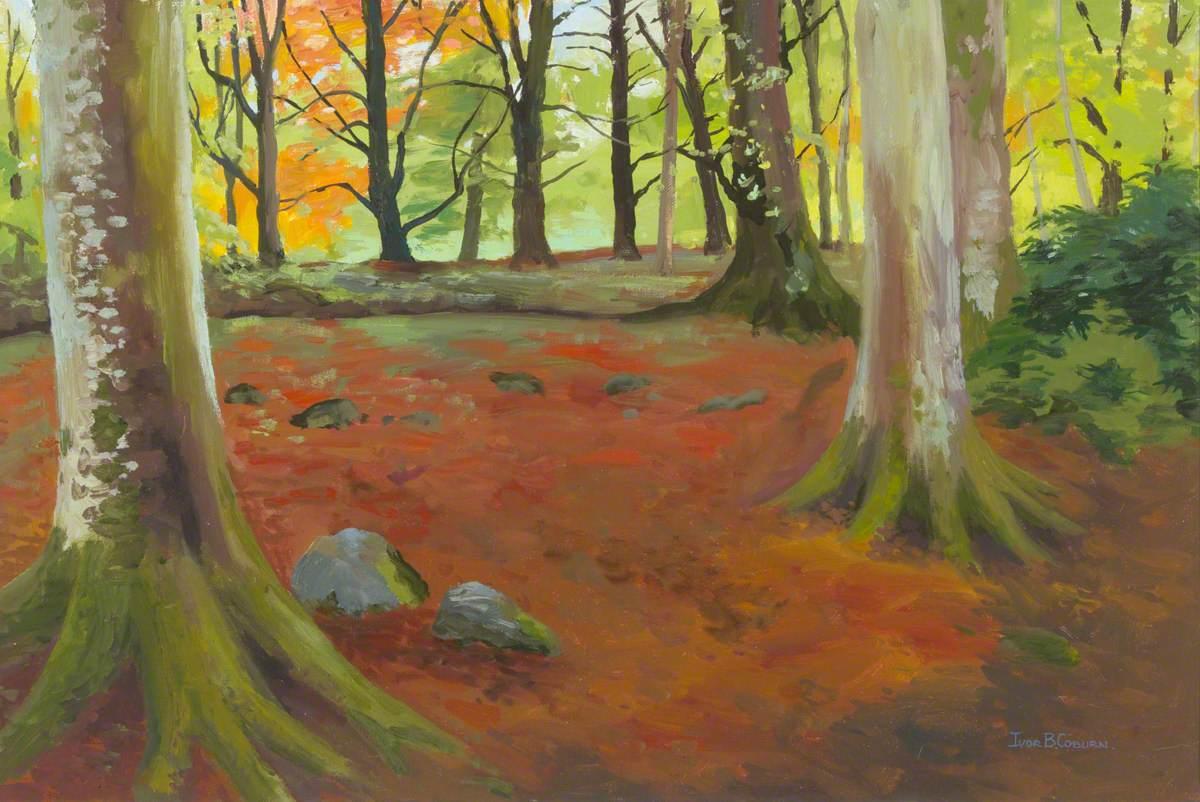 Woodland Scene*