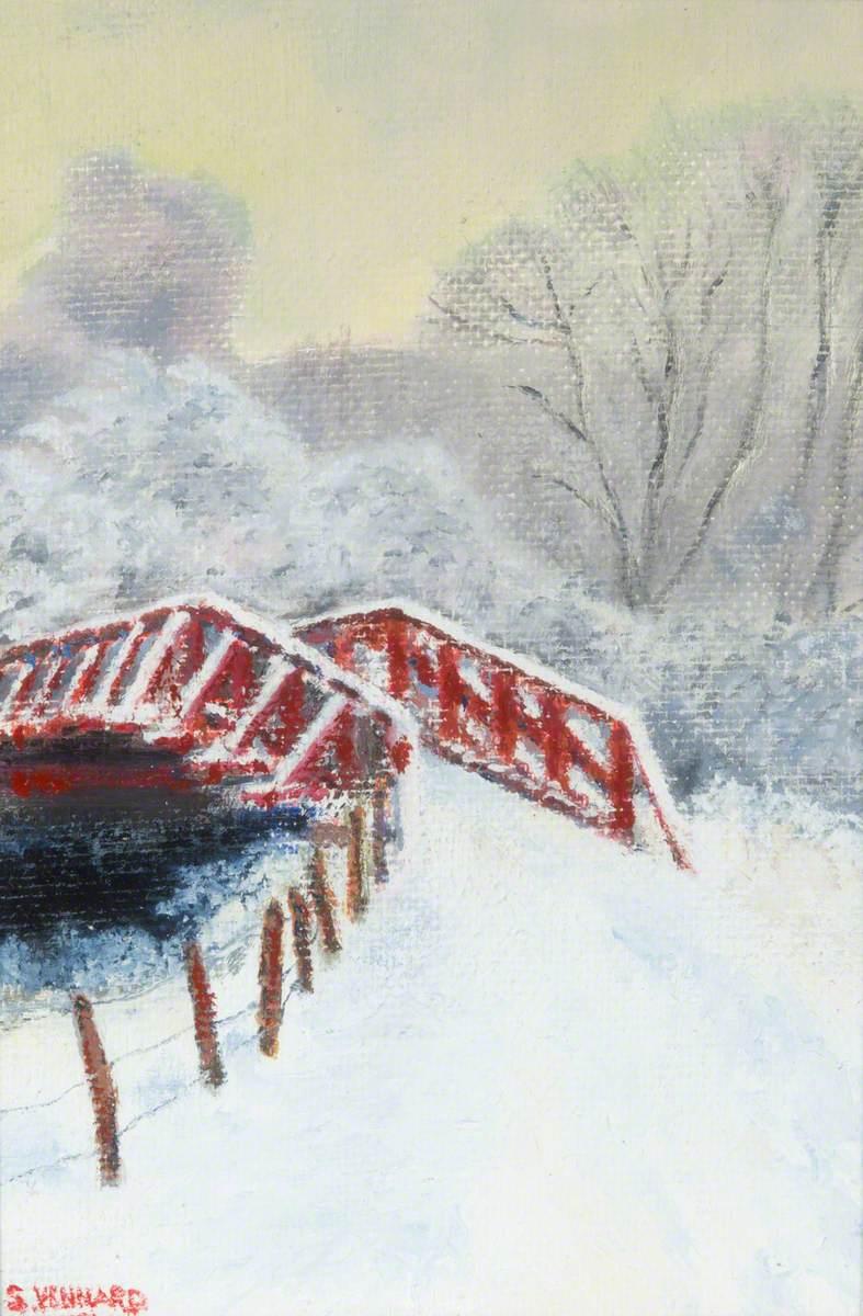 The Footbridge at Newforge Loch