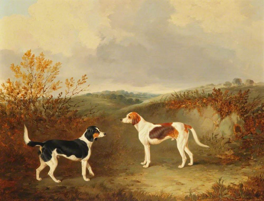 Two Foxhounds in a Landscape