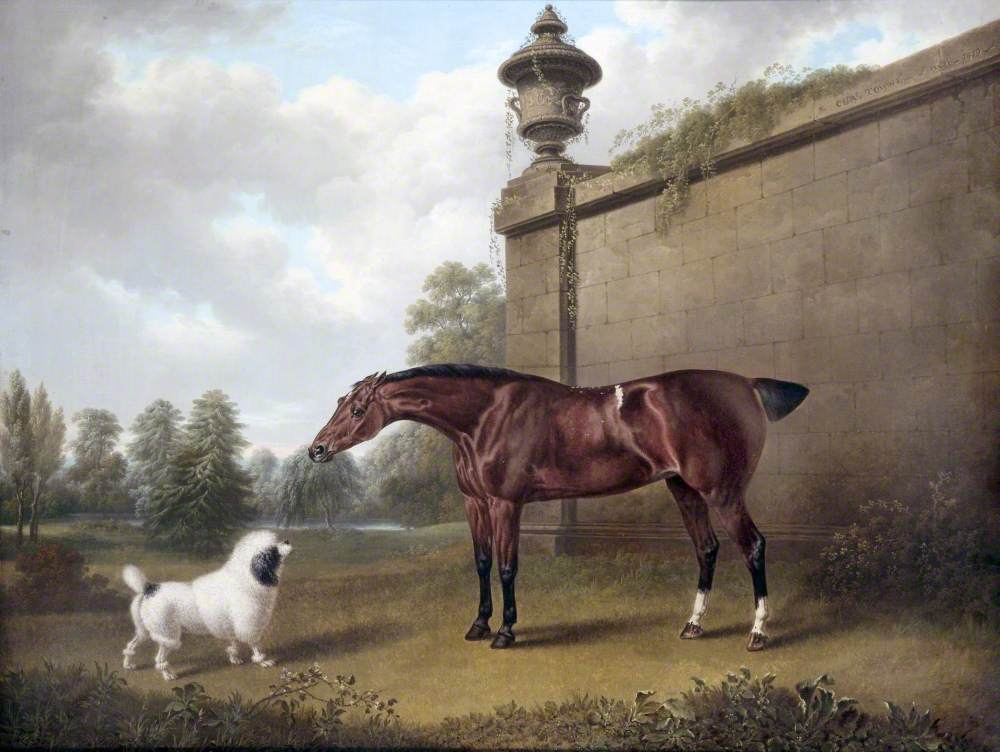 Chestnut Hunter and a Dog in a Park