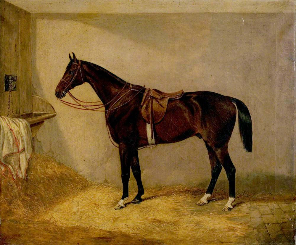 Portrait of the Horse, Which Belonged to Major Burton at the Balaklava Charge