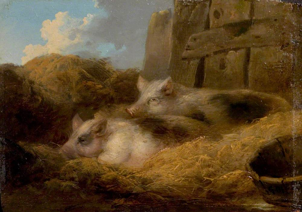 Two Pigs in Straw (Barn with Pigs)