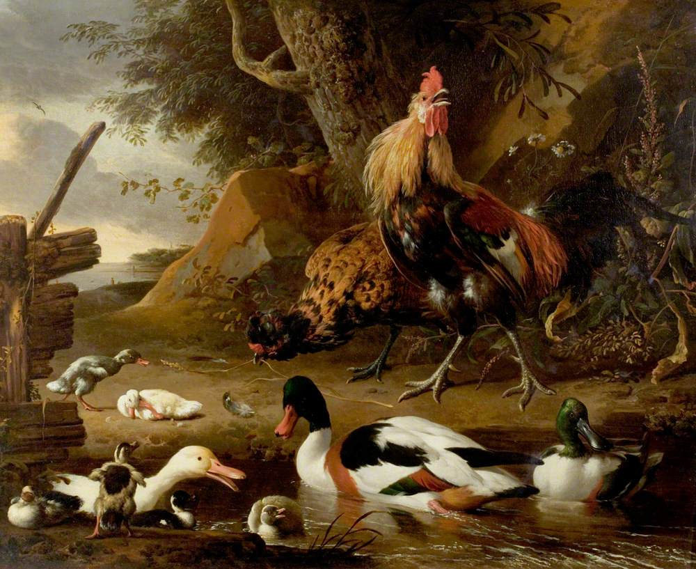 Two Fowls and Ducks on a Pond