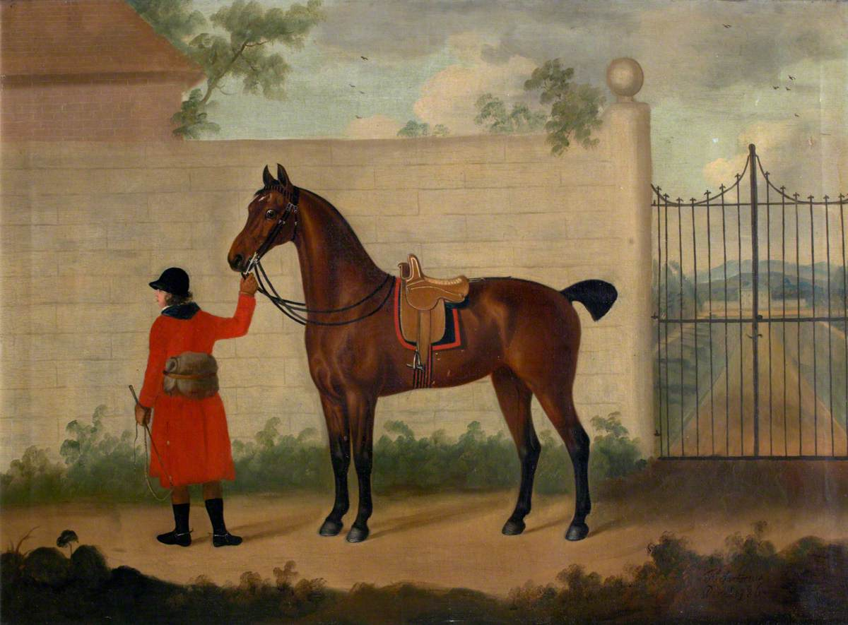 Bay Horse Outside a Gate